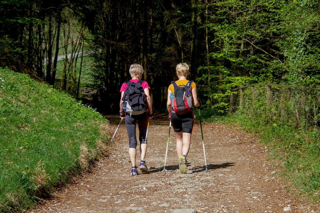 Nordic walking 1597055722