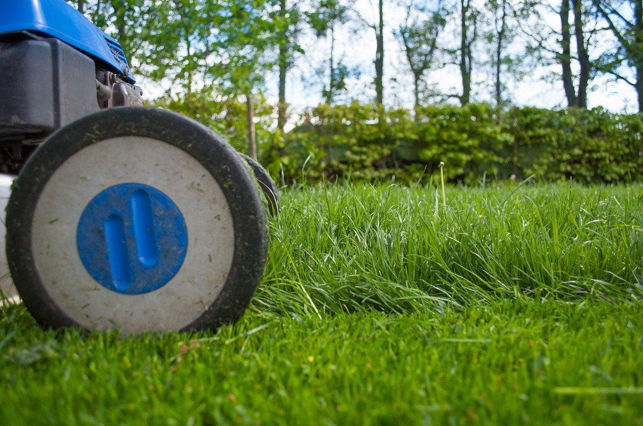 Nebaví vás pri kosení trávy riešiť palivo alebo kábel? Kúpte si AKU kosačku!